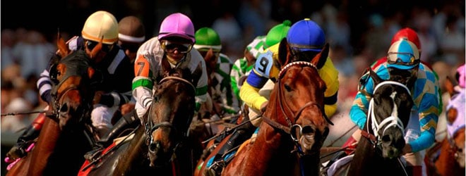 horse-wagering