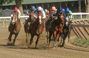 online horse betting in the US