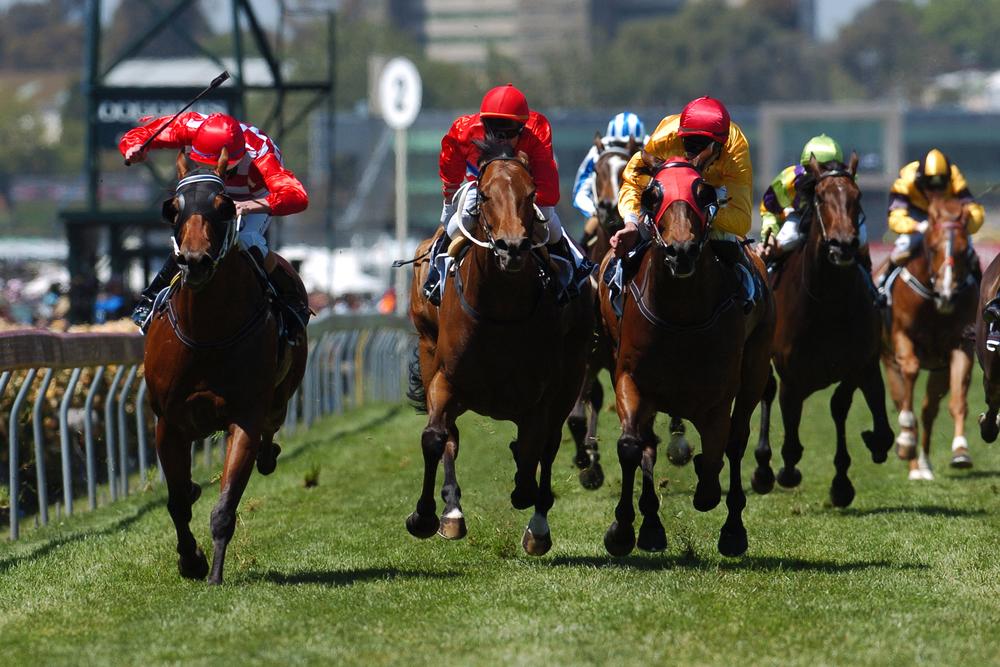 smartest bet in horse racing